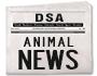 Mestrado DSA